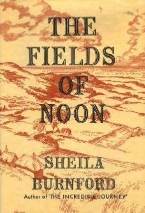 book cover of The Fields of Noon