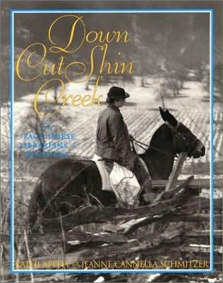 book cover of Down Cut Shin Creek