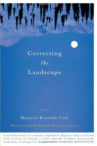 book cover of Correcting the Landscape