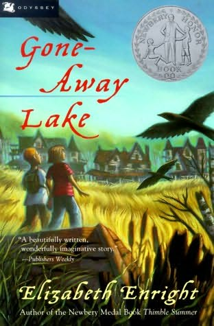 book cover of Gone-away Lake