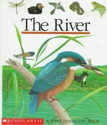 book cover of The River