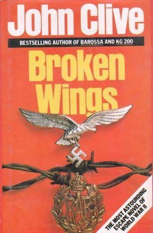book cover of Broken Wings