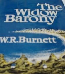 book cover of The Widow Barony