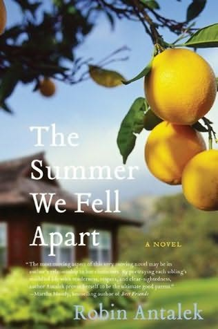 book cover of The Summer We Fell Apart