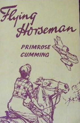 book cover of Flying Horseman