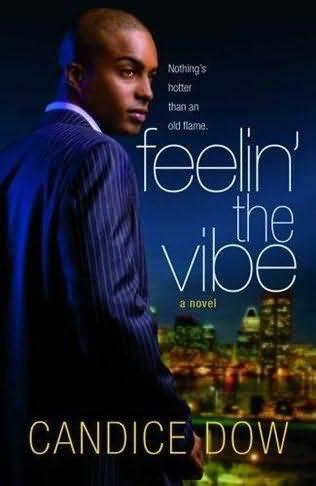 book cover of Feelin\' the Vibe