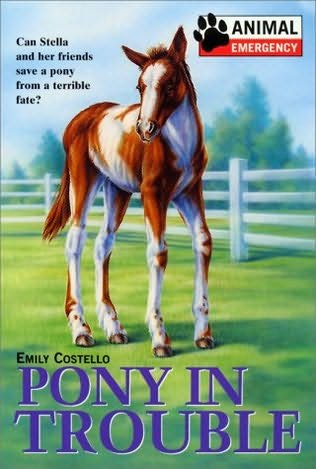 book cover of Pony In Trouble
