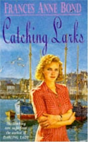 book cover of Catching Larks
