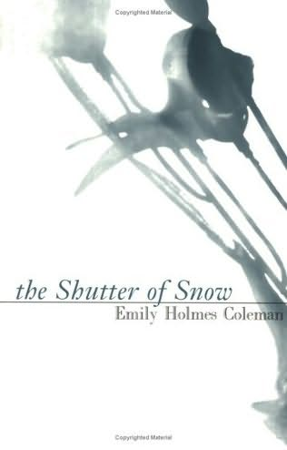 book cover of The Shutter of Snow