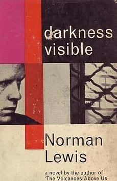 book cover of Darkness Visible
