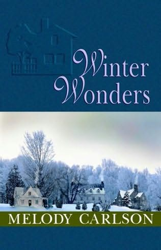 book cover of Winter Wonders