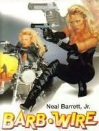 book cover of Barb Wire