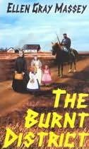 book cover of The Burnt District