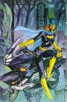 book cover of Batman: Batgirl