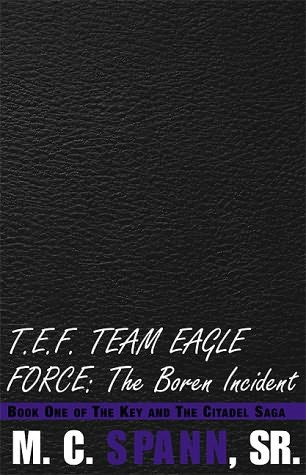 book cover of T.E.F. Team Eagle Force: The Boren Incident