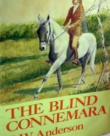 book cover of The Blind Connemara