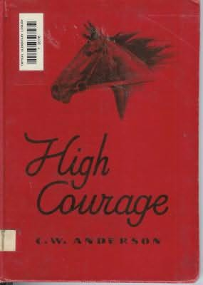 book cover of High Courage