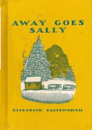 book cover of Away Goes Sally