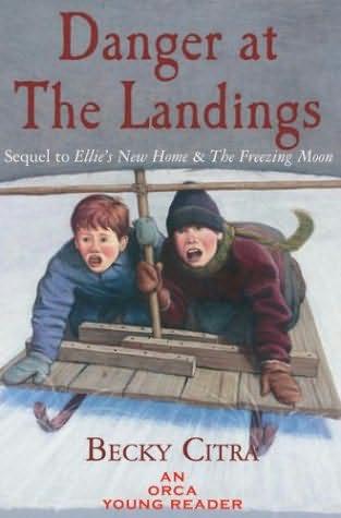 book cover of Danger At the Landings
