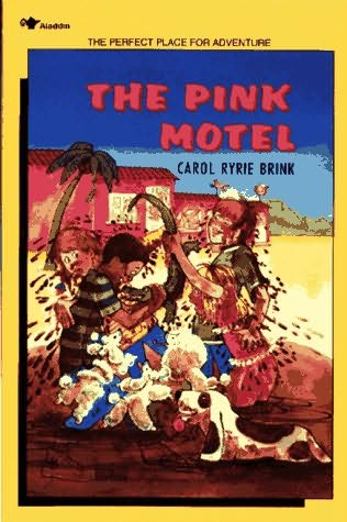 book cover of The Pink Motel