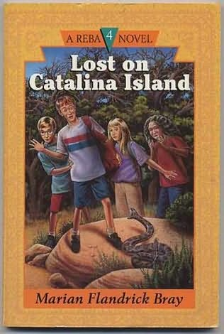 book cover of Lost On Catalina Island