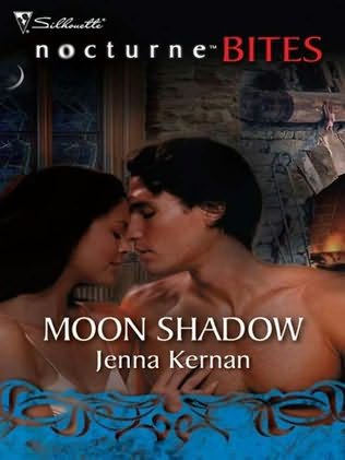 book cover of Moon Shadow