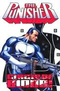 book cover of The Punisher