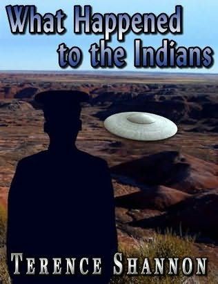 book cover of What Happened to the Indians