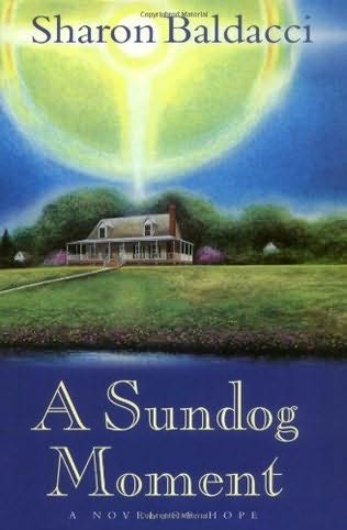 book cover of A Sundog Moment