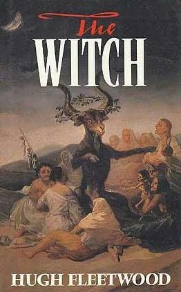book cover of The Witch