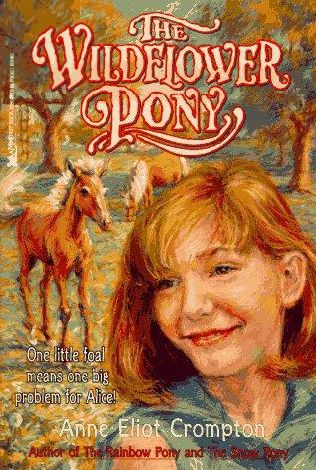 book cover of The Wildflower Pony
