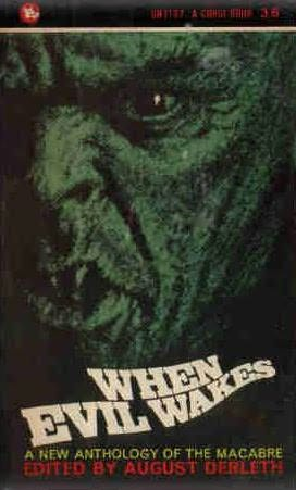book cover of When Evil Wakes