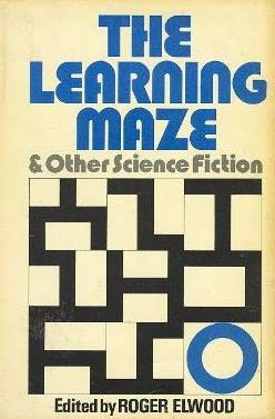 book cover of The Learning Maze