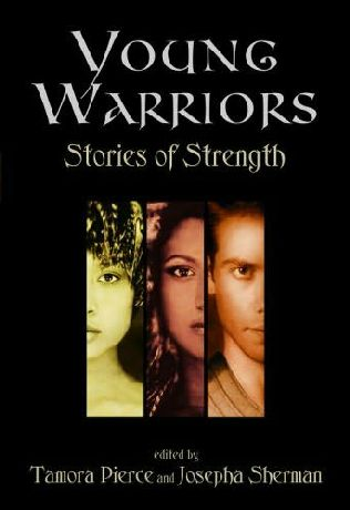 book cover of Young Warriors