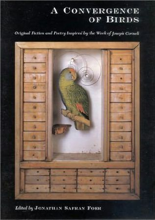 book cover of Convergence of Birds