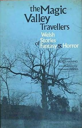 book cover of The Magic Valley Travellers