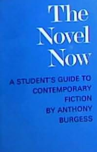 book cover of The Novel Now