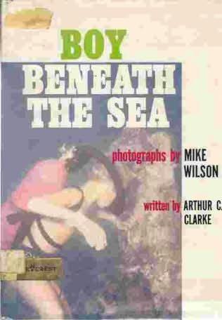 book cover of Boy Beneath the Sea