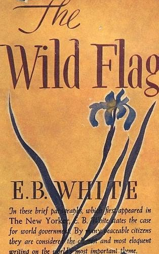 book cover of The Wild Flag