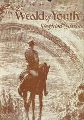 book cover of The Weald of Youth