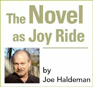book cover of The Novel as Joy Ride