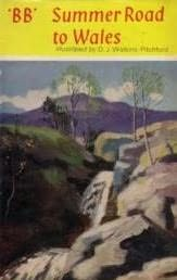 book cover of Summer Road to Wales