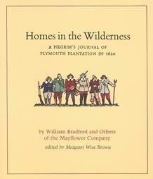 book cover of Homes in the Wilderness