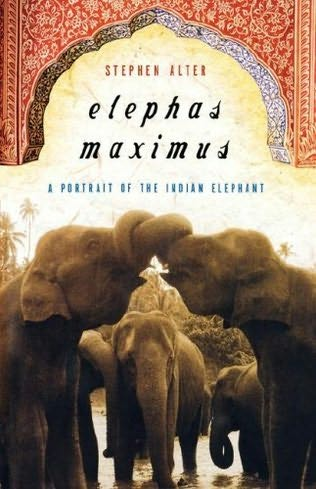 book cover of Elephas Maximus