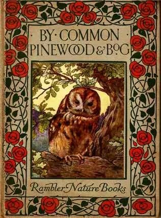 book cover of By Common, Pinewood, and Bog