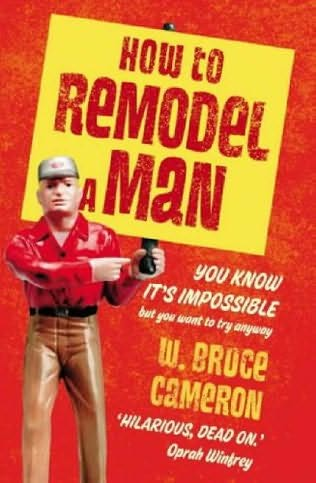 book cover of How to Remodel a Man