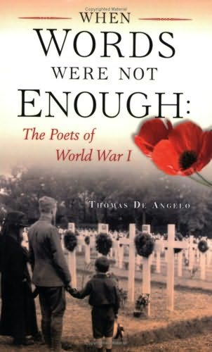 book cover of When Words Were Not Enough