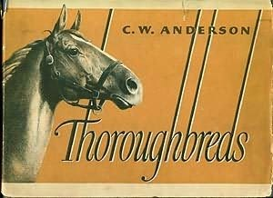 book cover of Thoroughbreds
