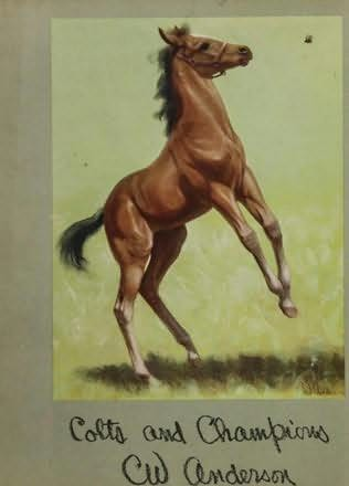 book cover of Colts and Champions