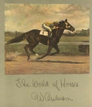 book cover of The World of Horses